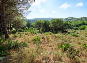 Thumbnail Land for sale in San Roque, Cadiz, Spain