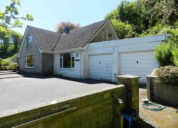 Thumbnail 4 bed detached bungalow for sale in Pant-Y-Castell, Solva, Haverfordwest, Pembrokeshire