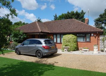 Thumbnail 3 bed detached bungalow for sale in Hollesley Road, Alderton, Woodbridge