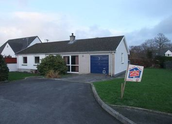 Thumbnail 3 bed detached bungalow for sale in Bryn Bedw, Llechryd, Cardigan