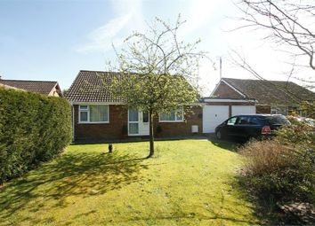 Thumbnail 3 bed detached bungalow for sale in The Link, Bentley, Ipswich, Suffolk