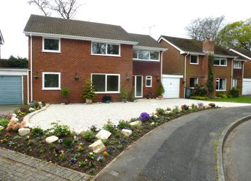Thumbnail 6 bed link-detached house for sale in St Johns Glebe, Rownhams, Southampton