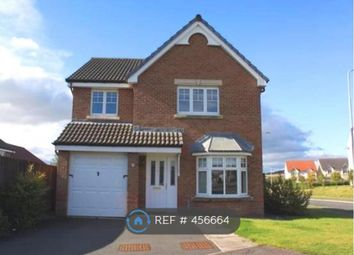Thumbnail 4 bed detached house to rent in Fleming Drive, Kirkcaldy