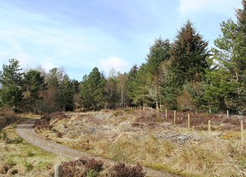 Thumbnail Land for sale in Plot At Abriachan, Inverness-Shire