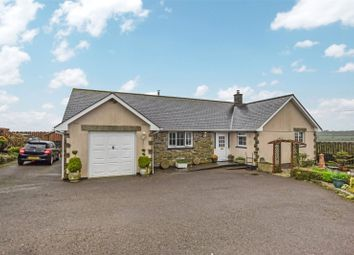 Thumbnail 2 bed bungalow to rent in Week St. Mary, Holsworthy