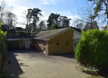 Thumbnail 4 bed detached bungalow for sale in Azalea Way, Camberley, Surrey