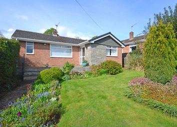 Thumbnail 3 bed detached bungalow for sale in Shillingford Abbot, Exeter, Devon
