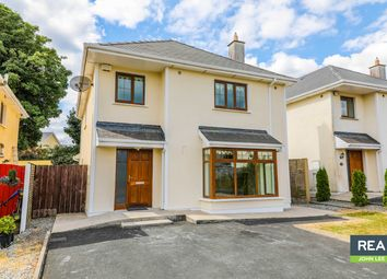 Thumbnail 4 bed detached house for sale in 102 Rosehill, Newport, Tipperary
