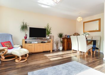 Thumbnail 3 bed terraced house for sale in Capel Street, Sheffield