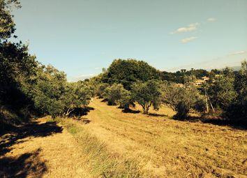 Thumbnail Land for sale in Belle Viste, Citerna, Campania