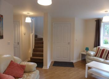 Thumbnail 3 bedroom property to rent in Student Accommodation, Cherry Tree Drive