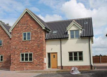 Thumbnail 3 bed detached house for sale in Pulham St Mary, Diss