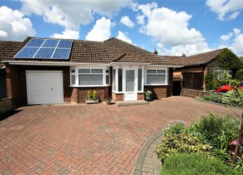 Thumbnail Detached bungalow for sale in Jenkins Avenue, Bricket Wood, St. Albans