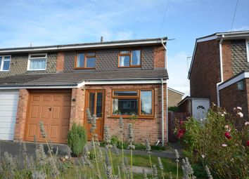 Thumbnail 3 bed property to rent in Millside, Stalham, Norwich