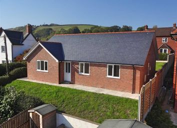 Thumbnail 3 bed detached bungalow for sale in Ty Newydd, Garden Lane, Off Llanfair Road, Newtown, Powys