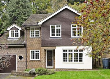 Thumbnail 6 bed detached house to rent in Shackstead Lane, Godalming
