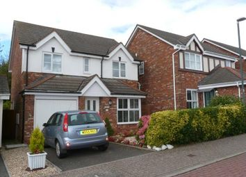 Thumbnail 4 bed detached house for sale in Paignton, Devon