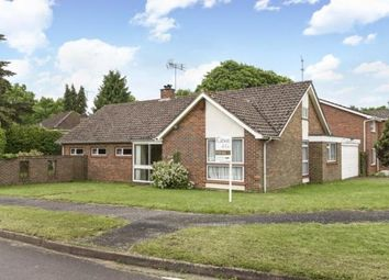 Thumbnail 3 bed property to rent in Churchill Close, Hartley Wintney, Hook