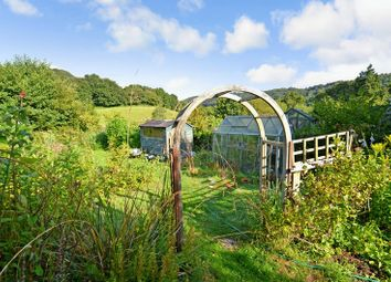 Thumbnail 4 bed detached house for sale in Lustleigh, Newton Abbot