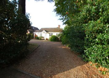 Thumbnail 3 bed bungalow to rent in Heath Park Road, Leighton Buzzard