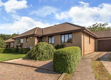 Thumbnail 3 bed detached bungalow for sale in 10 Orchard Court, East Linton