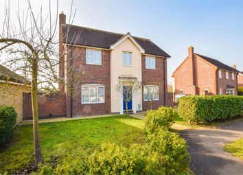 Thumbnail 4 bed detached house for sale in Sandmartin Crescent, Stanway, Colchester, Essex