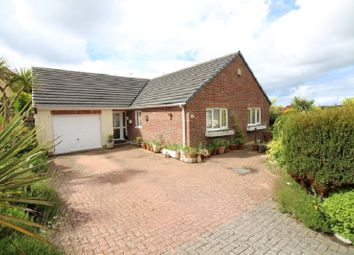 Thumbnail 3 bed bungalow to rent in 2 Fern Rise, Neyland, Milford Haven