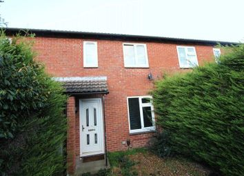 Thumbnail Terraced house to rent in Harrison Road, Southampton