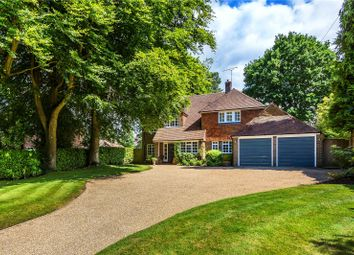 Thumbnail 5 bed detached house for sale in Great Austins, Farnham, Surrey