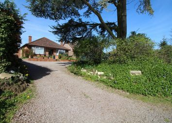Thumbnail 2 bedroom detached bungalow for sale in Brundall Road, Blofield, Norwich, Norfolk
