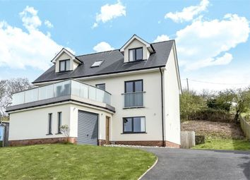 Thumbnail 4 bed detached house for sale in Dolphin Court, New Quay