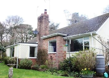 Thumbnail 3 bed detached bungalow for sale in Hawkins Lane, West Hill, Ottery St. Mary