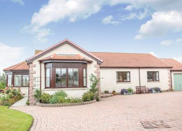 Thumbnail 3 bed detached bungalow for sale in The Steadings, Findochty, Buckie, Moray