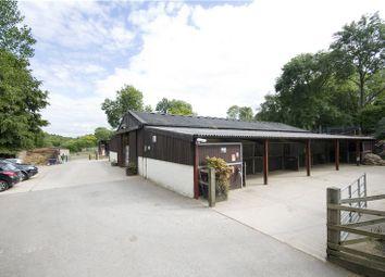 Thumbnail Detached bungalow for sale in Hurst Lane, Headley, Epsom, Surrey