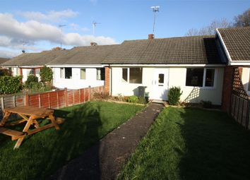 Thumbnail 2 bed bungalow to rent in Meadowside, Rockwell Green, Wellington