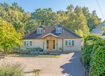 Thumbnail 4 bed detached bungalow for sale in Upper Bourne Lane, Wrecclesham, Farnham