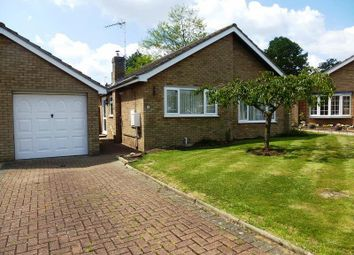 Thumbnail 2 bedroom detached bungalow to rent in Elm Close, Stilton, Peterborough