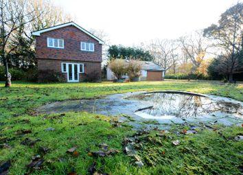 Thumbnail 4 bedroom detached house to rent in Arundel Road, Arundel