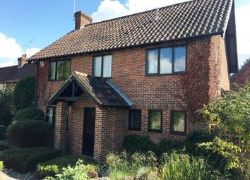 Thumbnail 4 bed detached house for sale in Meon, High Street, Droxford, Southampton