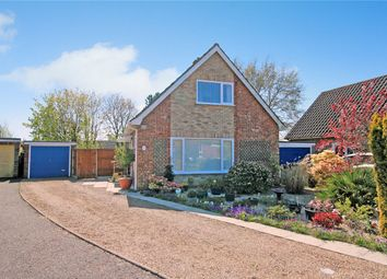 Thumbnail 2 bed detached house for sale in St. Marys Road, Poringland, Norwich, Norfolk