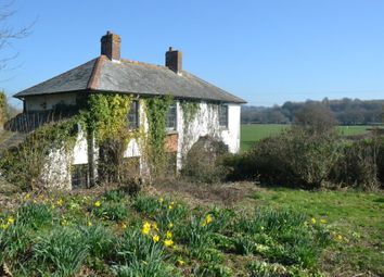 Thumbnail 3 bed detached house for sale in Meadow Cottage, Frogmore Road, East Budleigh, Budleigh Salterton, Devon