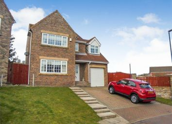 Thumbnail 4 bed detached house for sale in Ellison Meadow, Horden, Peterlee, Durham