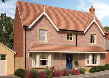 Thumbnail 4 bedroom detached house for sale in The Thornton, Ellicombe Gardens, Minehead, Somerset