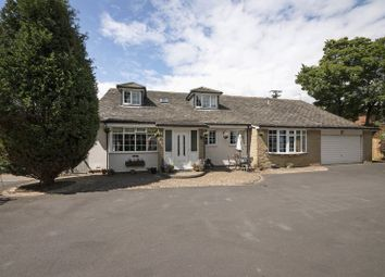Thumbnail 6 bed detached bungalow for sale in Fairmoor, Morpeth