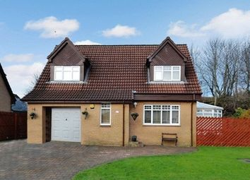 Thumbnail 4 bedroom detached house for sale in Wingfaulds Avenue, Dalry
