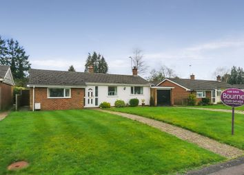 Thumbnail 2 bed detached bungalow for sale in Fairfield Green, Four Marks, Hampshire