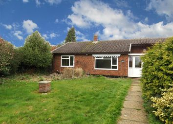 Thumbnail 2 bed bungalow to rent in Shillito Road, Blofield, Norwich