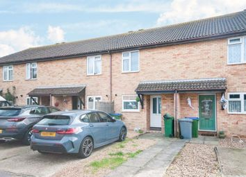 Thumbnail Terraced house for sale in The Peverals, Seaford
