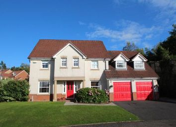 Thumbnail 4 bed detached house for sale in Cherrytree Wynd, East Kilbride, South Lanarkshire
