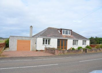 Thumbnail 3 bed bungalow for sale in Dunnet, Thurso